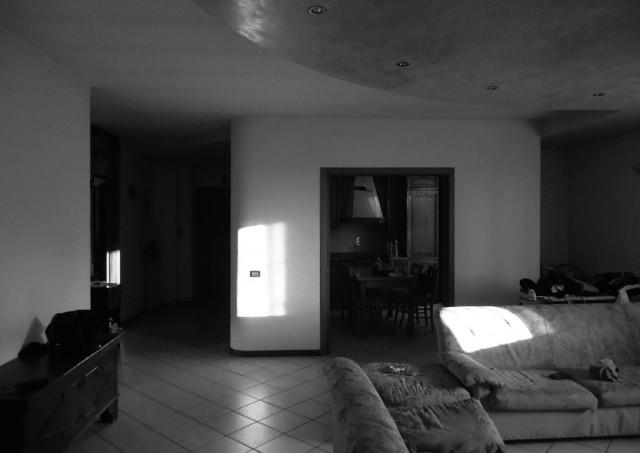 architettoPagani_casa F_001